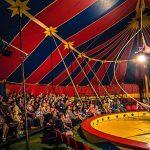 210201-Circus-Aotearoa-MN
